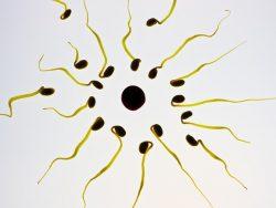 , Uczulenie na spermę partnera. Objawy i leczenie., Naturalna Płodność